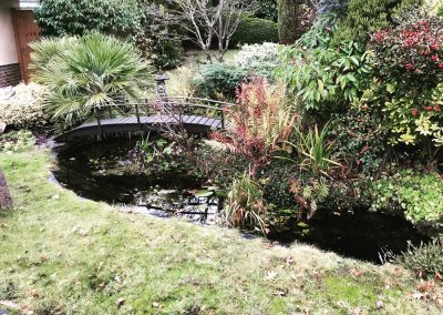 Before Pond renovation west chiltington