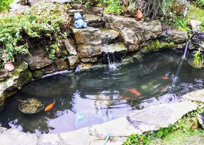 Finished pond clean Durrington