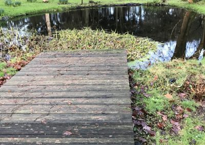 Pond clean after in Duncton