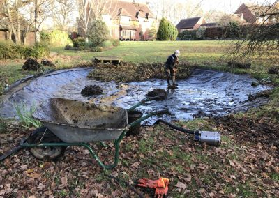 Pond cleaning Duncton